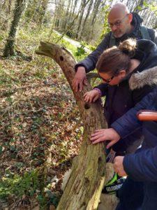 Doofblinden voelen aan de schors van een dode boom